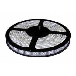 Cinta LED 5050 waterproof Adhesiva Blanco