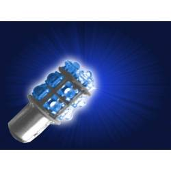 Bulbs LED 1034 12V